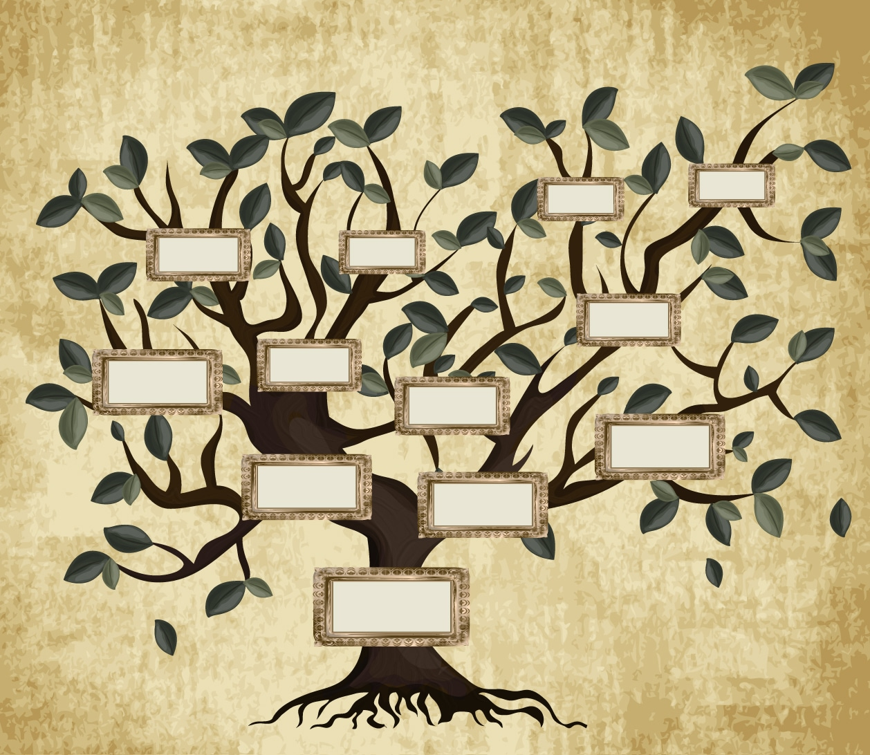 shutterstock-family-tree1