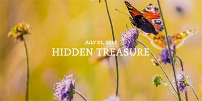 treasure-blog